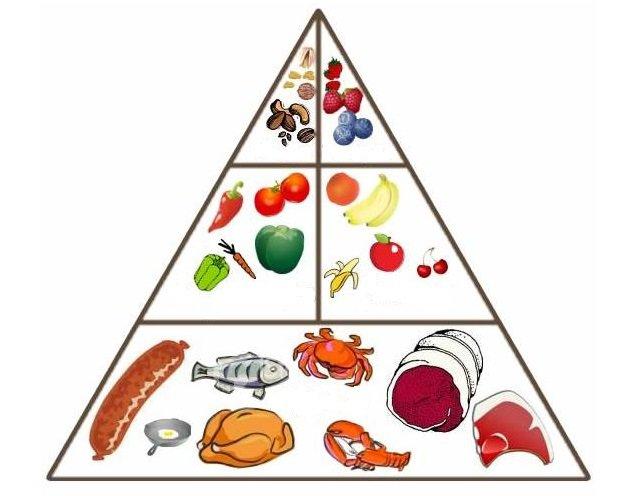 dieta_paleolitica